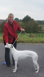 image: Fun Class 1 Best Rescue Judge Judith White