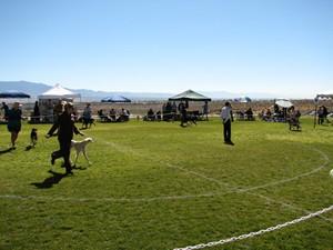 image: The NSC on tour in Albuquerque 2006
